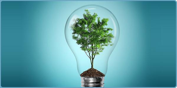 سازگاری با محیط زیست