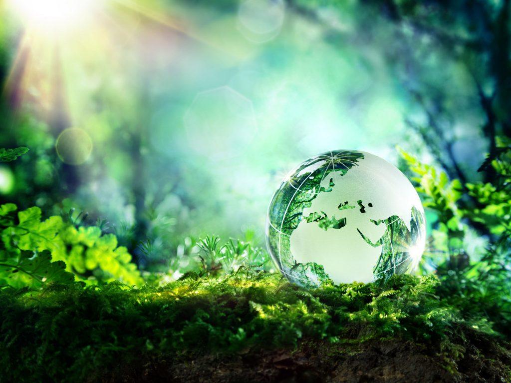 دیتاسنتر سبز