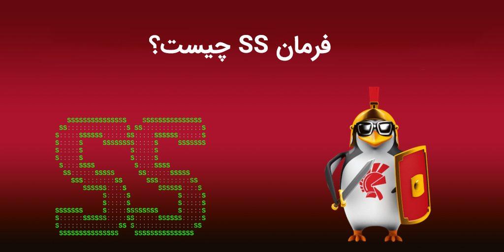 فرمان SS چیست؟ تعریف و کاربردهای فرمان ss