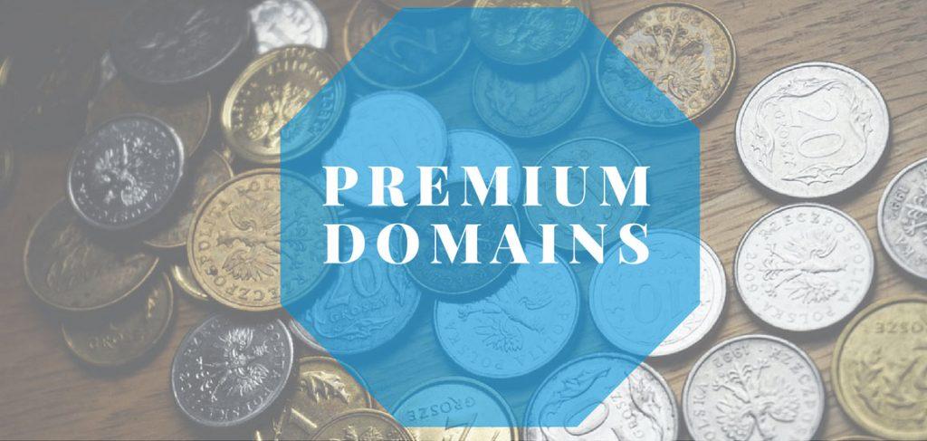 دامنه ویژه یا Premium Domain چیست؟