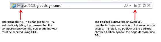 گواهینامه SSL چیست