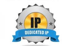 تاثیر IP اختصاصی در سئو سایت
